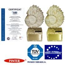 pinter pintados y derivados certificaciones
